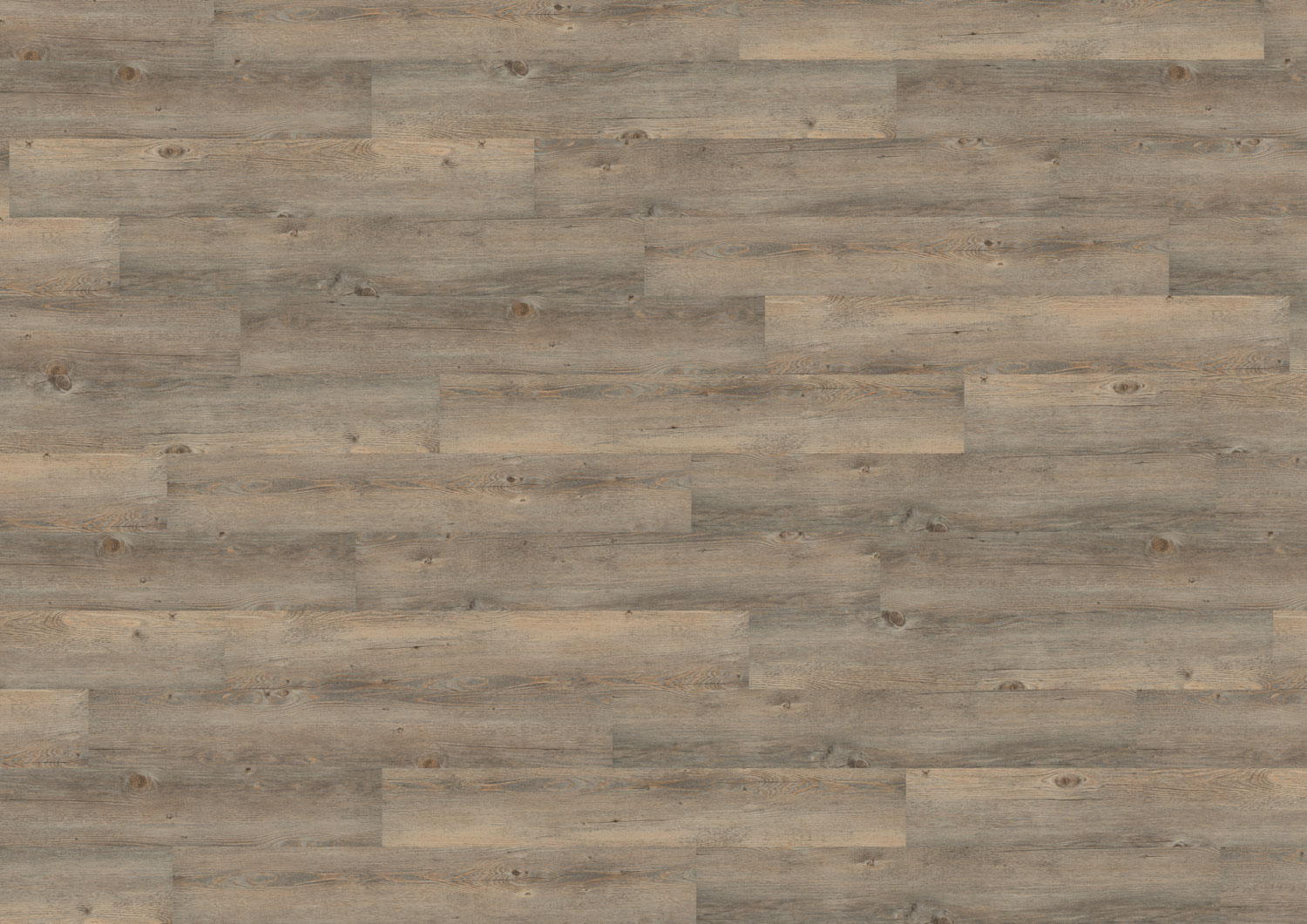 Wineo Toscany Pine Grey