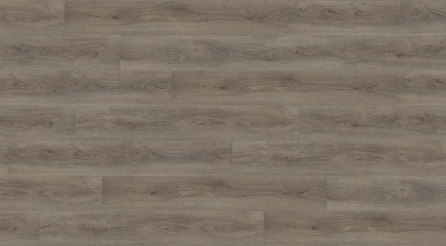 Wineo Aumera Oak Grey